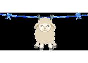 ✓ Entretien de la laine