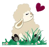 ✓ Notre laine merinos